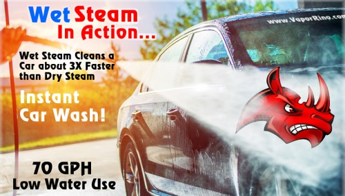 Uses Wet Steam Cleaner Amp Dry Steam Cleaners Learn More